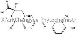 Chlorogenic acid1